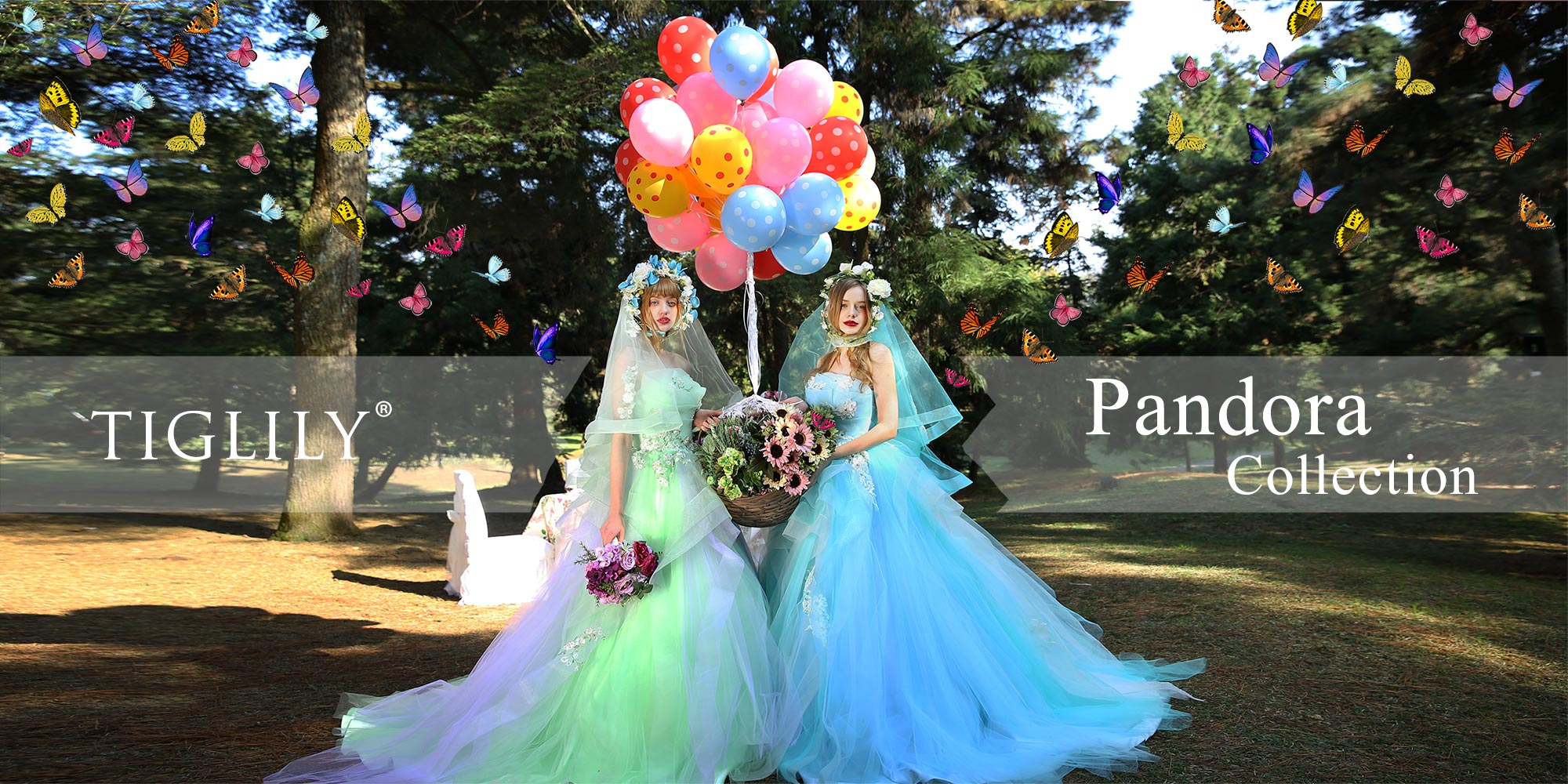 PANDORA(パンドラ) - TIGLILY COLLECTION